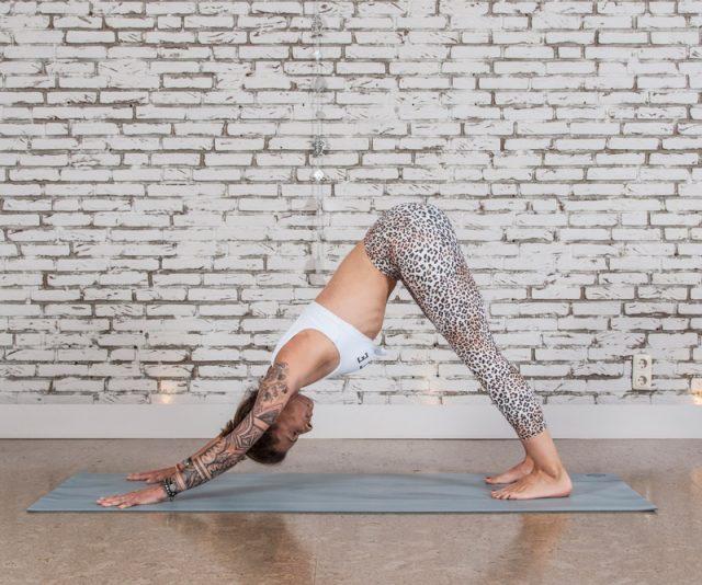 YogaPur Level 1