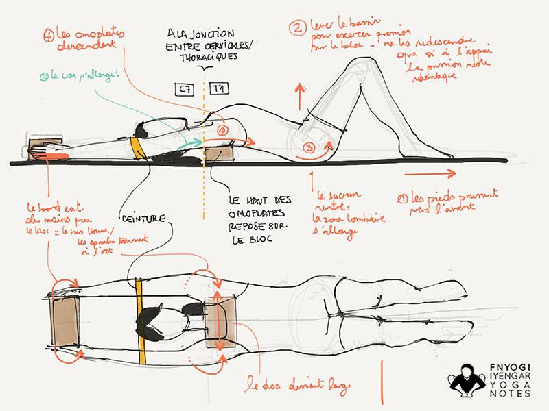 Iyengar yoga Workshop // Alignement, Sequencing und Bewegung - shoulder prep