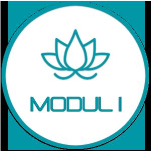 Modul 1 - YIN Yoga (Basic) | Ausbildung / Weiterbildung / Vertiefung – mit René Hug
