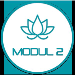 Modul 2 - Yin Restorative Yoga & Hilfsmittel – mit René Hug (Vertiefung von Modul 1)
