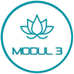 Modul 3 - Restorative Yoga – mit René Hug