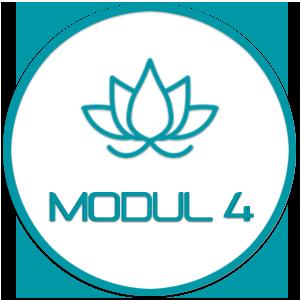 Modul 4 - Yin & Yang und Yogatherapie – mit René Hug